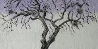 arbre-en-hiver-001