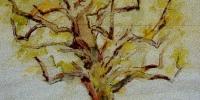 le-poirier-au-printemps
